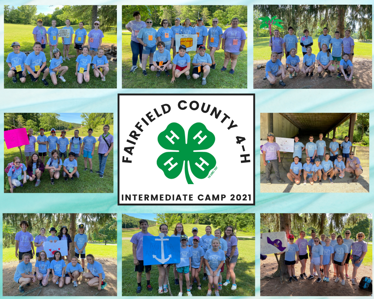 Fairfield County Intermediate Camp photo of including picture of each group