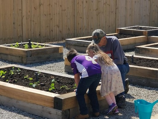 youth and MGV planting salad garden