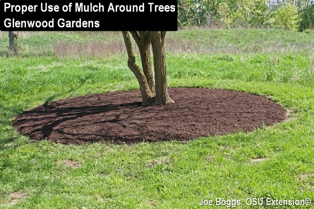 Proper mulch