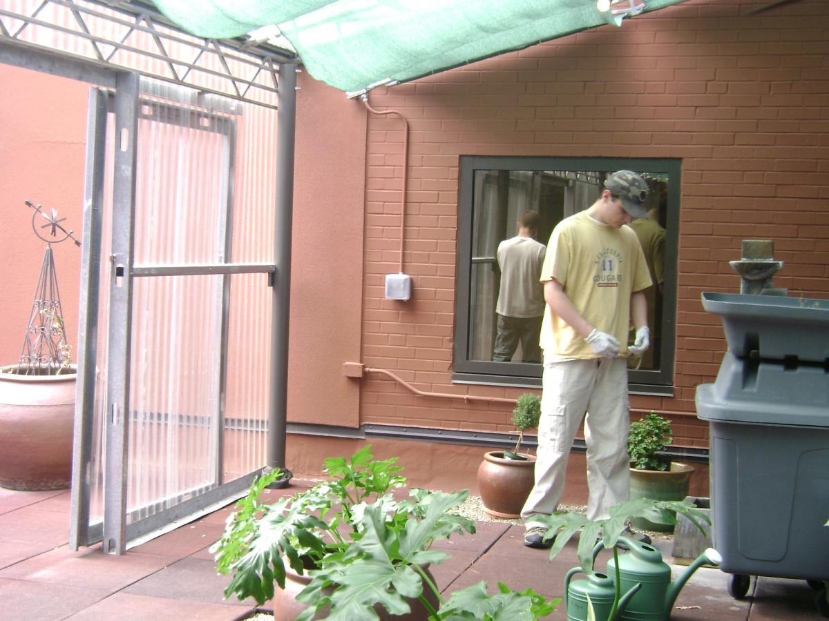 Master Gardener Volunteer working on plant in a greenhouse area in the Tranquility Garden at FMC