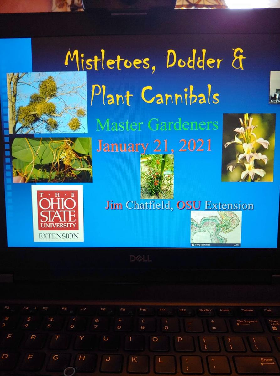 computer screen showing a Zoom program title - Mistletoes, Dodder & Plant Cannibals